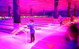 Bowling-1.jpg